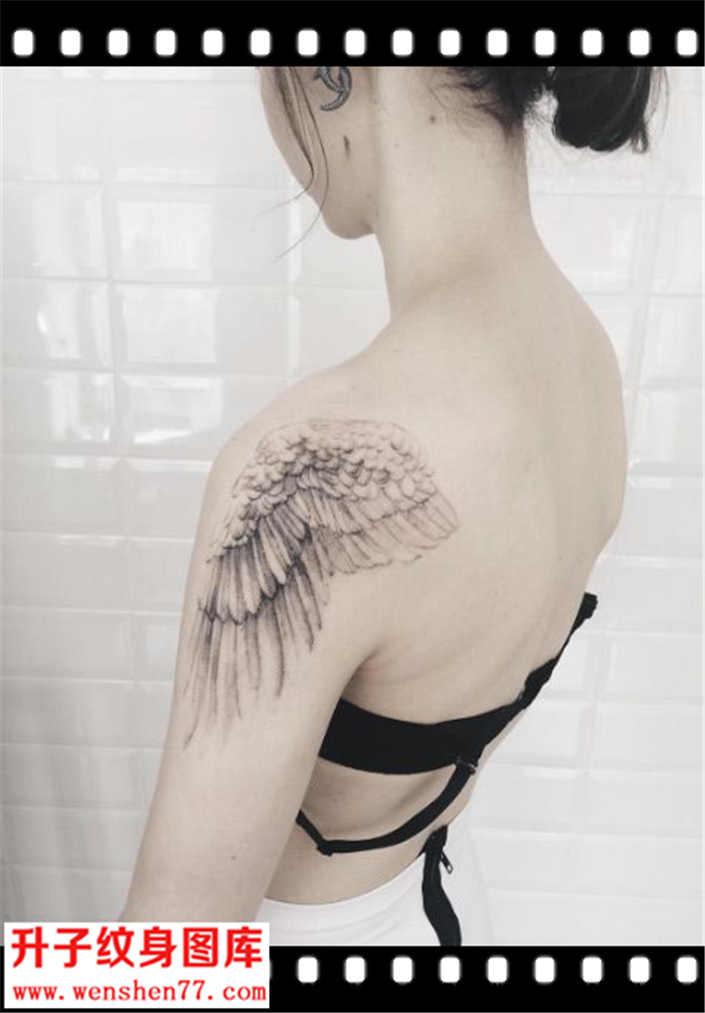 纹身图案  标签:             手腕唯美的小翅膀纹身图案